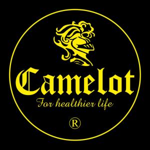 logo_camelot